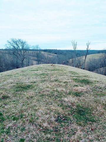 Tract #6 Stone Lane, Sadieville, KY 40370 (MLS #547014) :: Caldwell Group