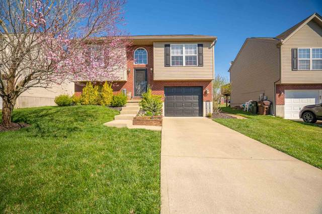 642 Cutter Lane, Independence, KY 41051 (MLS #547352) :: Apex Group