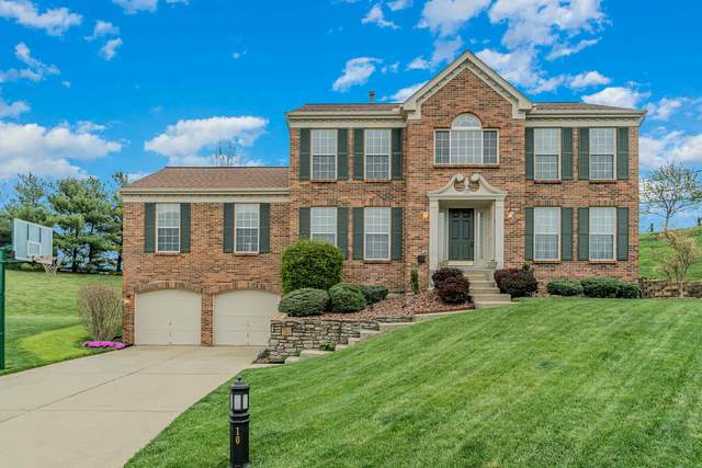 10 Shelter View Court, Wilder, KY 41076 (MLS #547486) :: Apex Group