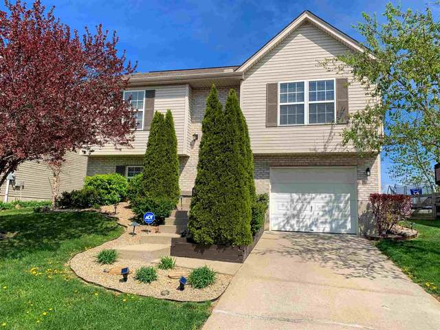 638 Branch Court, Independence, KY 41051 (MLS #547517) :: Apex Group