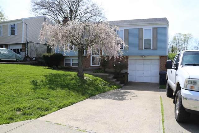 6215 Apple Valley Court, Florence, KY 41042 (MLS #547613) :: Mike Parker Real Estate LLC