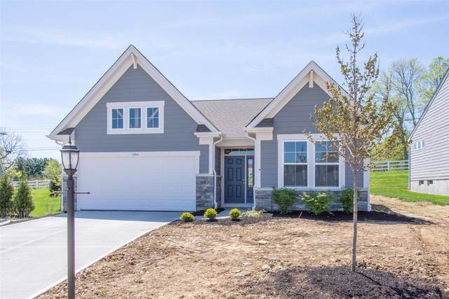 11941 Cloverbrook Drive, Union, KY 41091 (MLS #548053) :: Caldwell Group