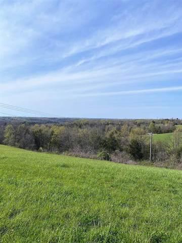 16.30 Acres Turner Road, Williamstown, KY 41097 (MLS #548192) :: Mike Parker Real Estate LLC