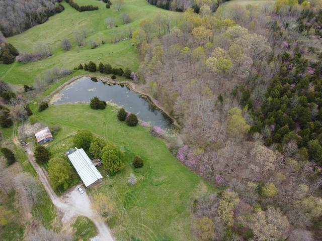2250 Stone School House Road, Williamstown, KY 41097 (MLS #548209) :: Mike Parker Real Estate LLC