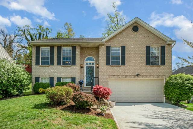 605 Grandview Avenue, Newport, KY 41071 (MLS #548267) :: Mike Parker Real Estate LLC
