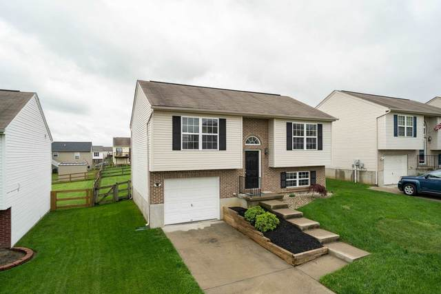 623 Branch Court, Independence, KY 41051 (MLS #548390) :: Caldwell Group