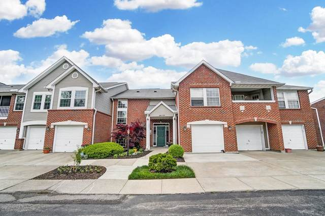 557 Fawn Run, Highland Heights, KY 41076 (MLS #548442) :: Apex Group