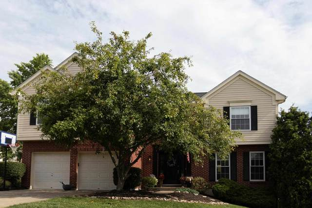 3 Ivy Court, Alexandria, KY 41001 (MLS #550873) :: Caldwell Group
