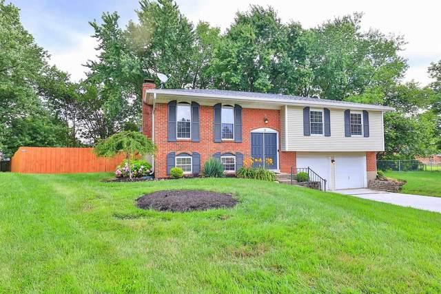 6 Braun Court, Villa Hills, KY 41017 (MLS #551128) :: The Scarlett Property Group of KW