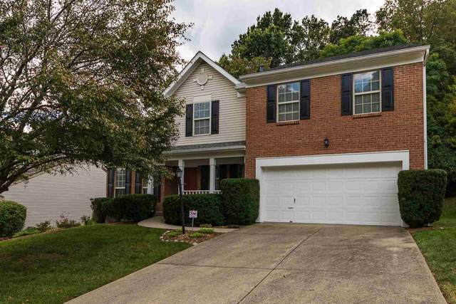 119 Fort Beech Drive, Southgate, KY 41071 (#553151) :: The Susan Asch Group