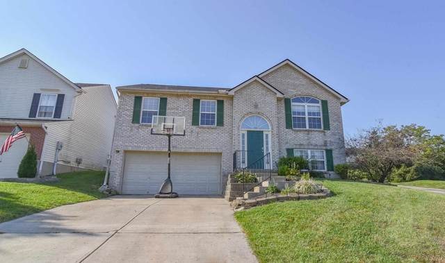 655 Lyonia Drive, Independence, KY 41051 (#553497) :: The Chabris Group