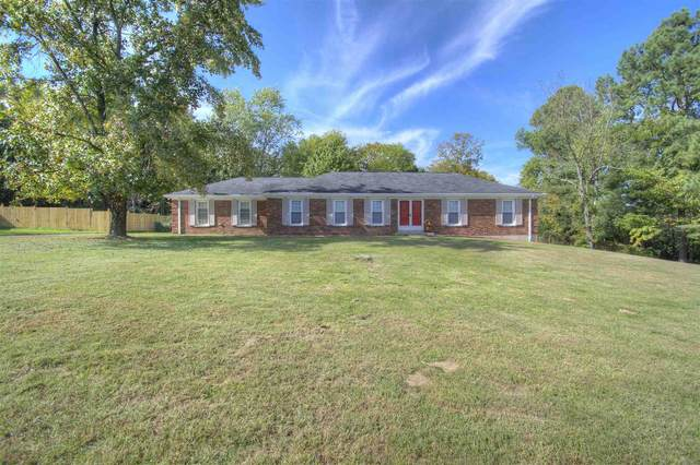 10037 Duncan, Florence, KY 41042 (MLS #553926) :: Apex Group