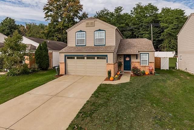 5627 Damson Drive, Burlington, KY 41005 (MLS #553956) :: The Scarlett Property Group of KW