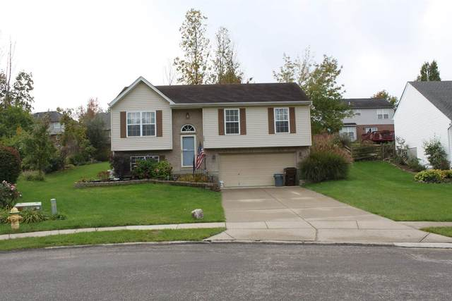 1339 Wingate Drive, Florence, KY 41042 (MLS #554184) :: Apex Group