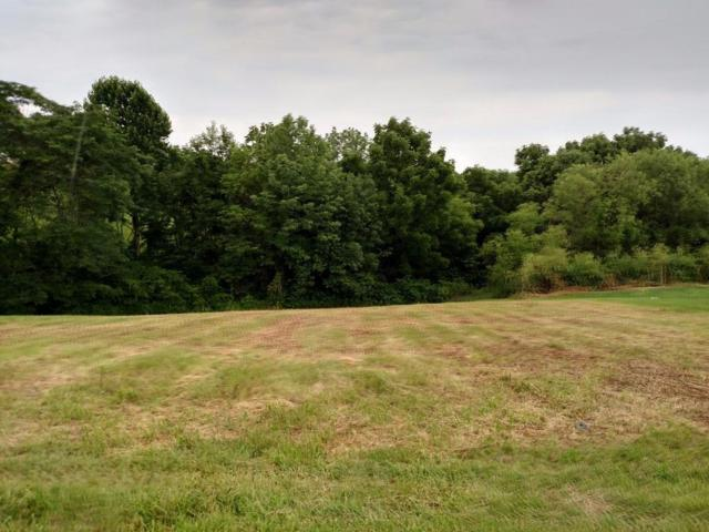 0 Hogg Ridge Rd Lot 3, Williamstown, KY 41097 (MLS #456801) :: Mike Parker Real Estate LLC