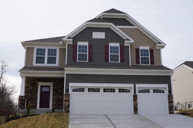 705 Norbie Drive, Burlington, KY 41005 (MLS #501704) :: Missy B. Realty LLC