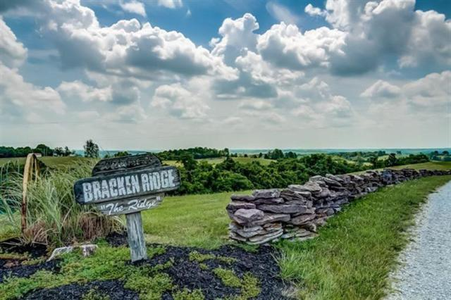 338 Toadvine Road, Brooksville, KY 41004 (#512310) :: The Dwell Well Group