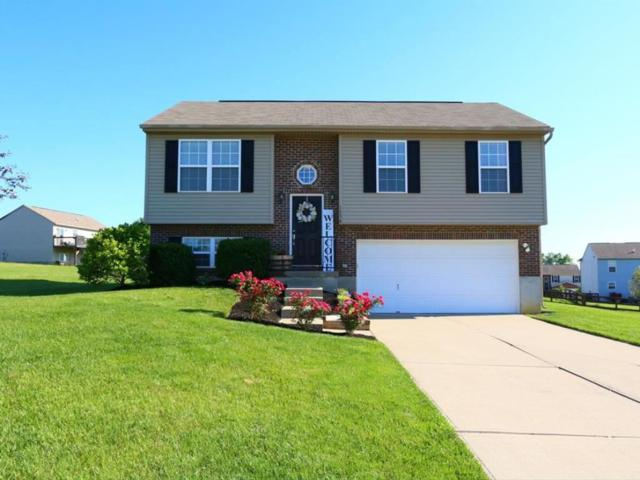 1338 Lismore Court, Independence, KY 41051 (MLS #515992) :: Apex Realty Group