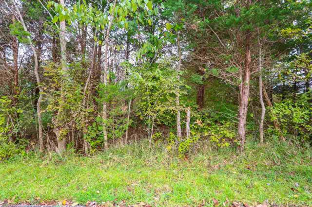 0 Stone School House Road, Williamstown, KY 41097 (MLS #520923) :: Mike Parker Real Estate LLC