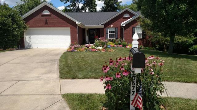 10677 Blue Spruce, Independence, KY 41051 (MLS #524067) :: Mike Parker Real Estate LLC