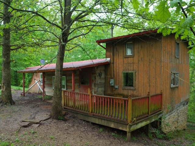 321 Woodland Acres Road, Brooksville, KY 41004 (MLS #537379) :: Caldwell Realty Group