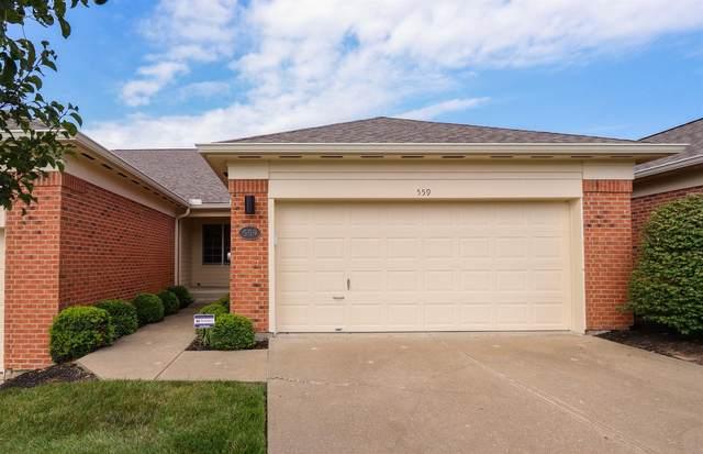 559 Palmer Court, Crestview Hills, KY 41017 (MLS #540417) :: Caldwell Group
