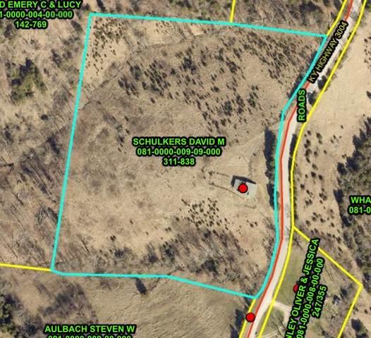 3075 Ky Highway 3004, Berry, KY 41003 (MLS #547051) :: Mike Parker Real Estate LLC