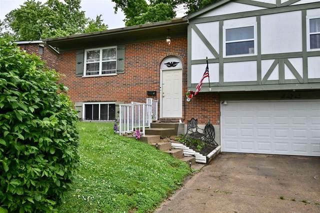 263 Merravay Drive, Florence, KY 41042 (MLS #549432) :: Parker Real Estate Group