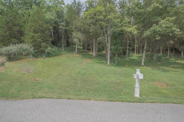 Lot 159 Wideview Drive, Sparta, KY 41086 (MLS #552062) :: Caldwell Group