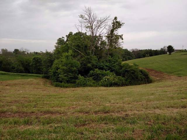 0 Hogg Ridge Road Lot 7, Williamstown, KY 41097 (#456795) :: The Chabris Group
