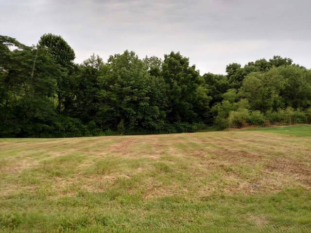 0 Hogg Ridge Rd Lot 3, Williamstown, KY 41097 (#456801) :: The Chabris Group