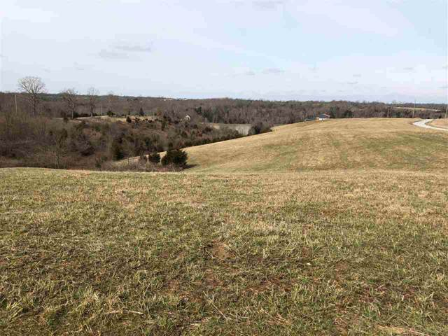 Lot 5 & 6 James Boling Lane, Owenton, KY 40359 (#524597) :: The Chabris Group
