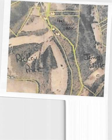 813 Bee Lick Ln., Mt Olivet, KY 41064 (#545263) :: The Huffaker Group