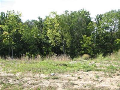 78 Deertrail Drive, Erlanger, KY 41018 (MLS #438607) :: Mike Parker Real Estate LLC