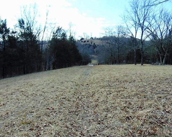 2465 Cedar Rd, Stamping Ground, KY 40379 (MLS #512259) :: Mike Parker Real Estate LLC