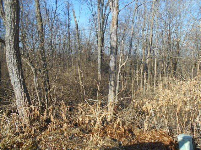 Schweitzer Court Lot 8, Alexandria, KY 41001 (MLS #512627) :: Apex Realty Group