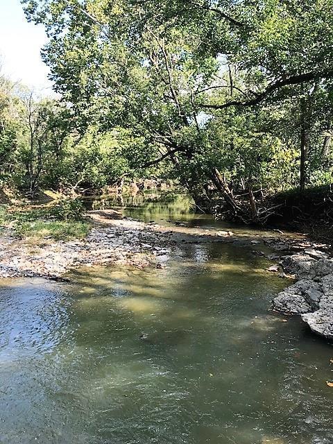 86 Acres Sipple Road, Dry Ridge, KY 41035 (MLS #520287) :: Apex Realty Group