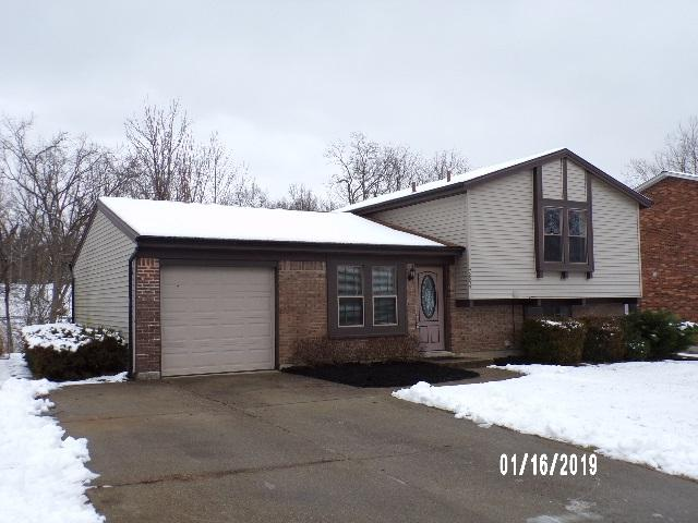 7697 Banklick Street, Florence, KY 41042 (MLS #523185) :: Apex Realty Group