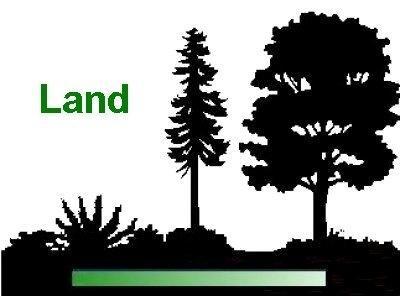 46.43Ac Bonar & Woodland Road, Falmouth, KY 41040 (MLS #524923) :: Mike Parker Real Estate LLC
