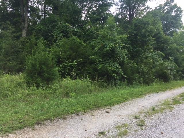 Gailen Drive #38, Demossville, KY 41033 (#528242) :: The Chabris Group