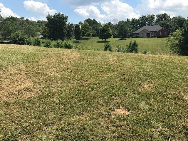 190 Maple Ridge, Crittenden, KY 41030 (MLS #528868) :: Mike Parker Real Estate LLC