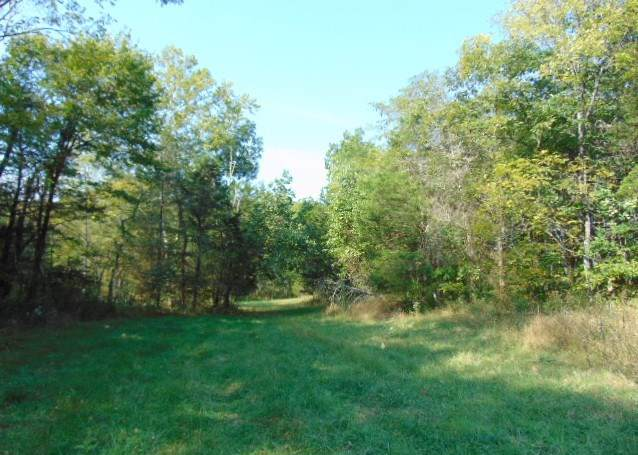 71 Acres Caney Creek - Photo 1