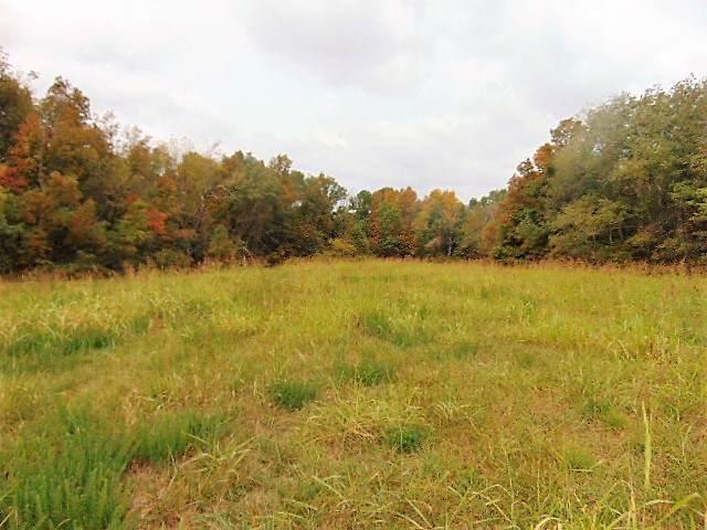85.76 acres Hwy 127N - Photo 1