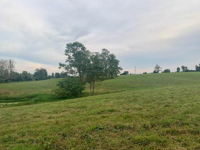 905 Eads Road Lot #9, Verona, KY 41033 (#532327) :: The Chabris Group