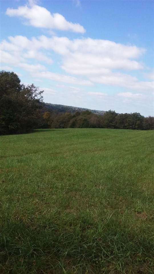 45+/- Acre New Zion, Foster, KY 41043 (MLS #533202) :: Missy B. Realty LLC
