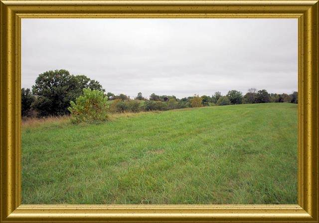 96.5 acres Old Cynthiana Road, Williamstown, KY 41097 (MLS #535087) :: Mike Parker Real Estate LLC
