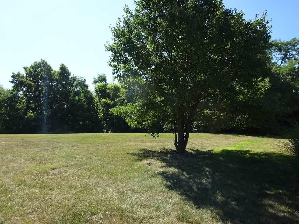 3455 Sunbrite Drive - Photo 1