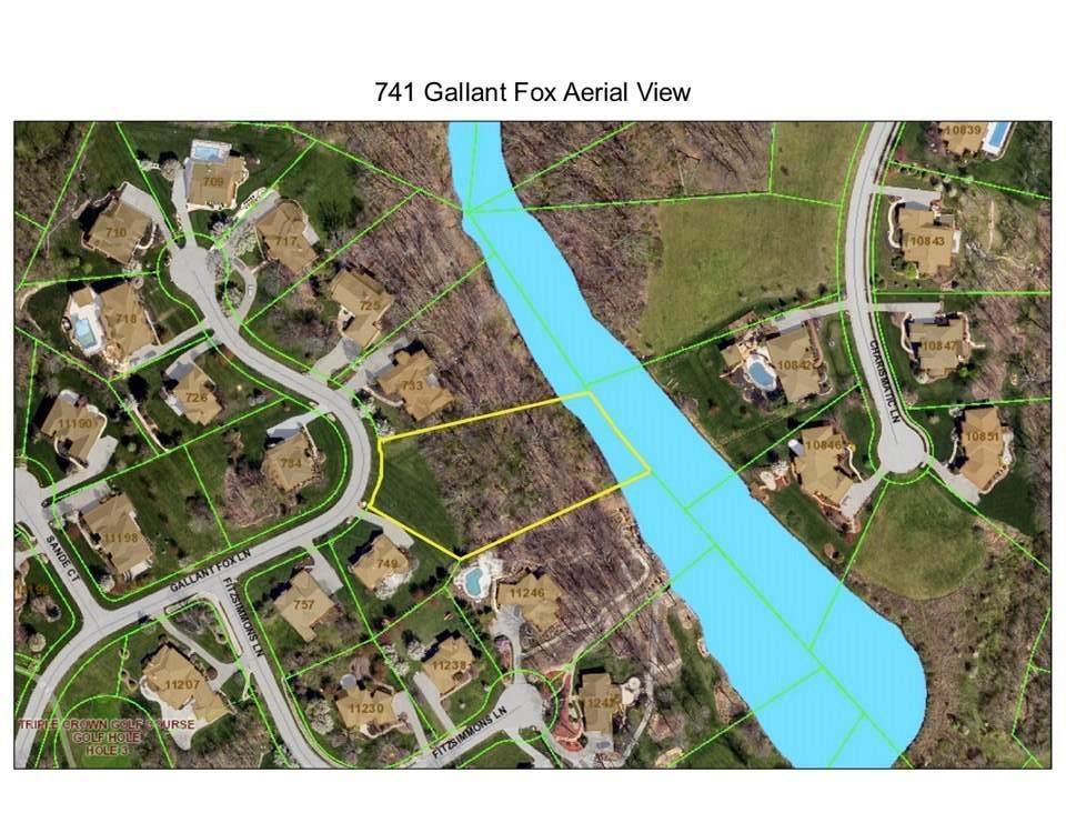 741 Gallant Fox - Photo 1