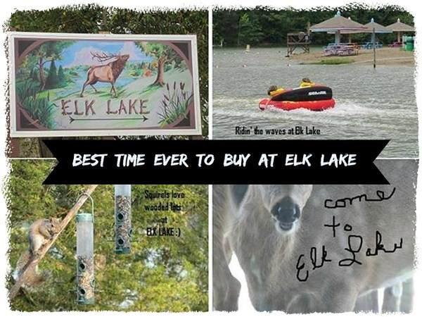 LOTS  479 & 528 @Elk Lake Resort - Photo 1