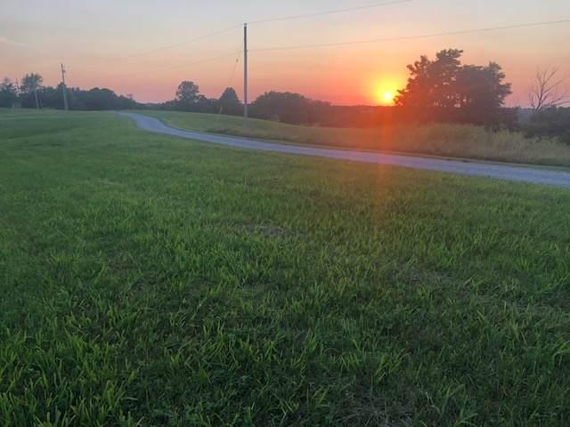 4 acres Kerns Lane, Jonesville, KY 41052 (MLS #539075) :: Mike Parker Real Estate LLC